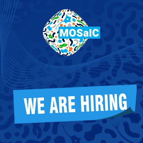 We're hiring: Postdoctoral Researcher