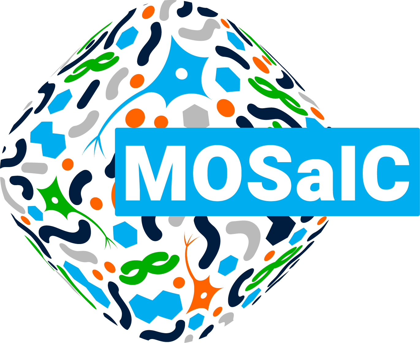 mosaic test
